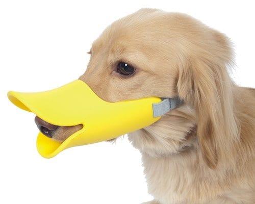Dog Duck Muzzle