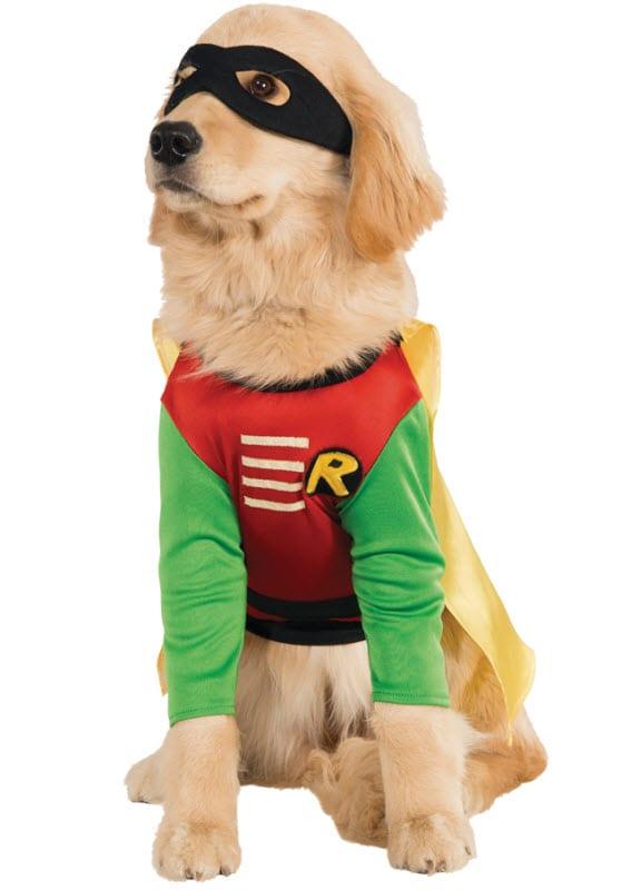 Big Dog Superhero Halloween Costume  sc 1 st  Philosophy of Dog & Big Dogs and Halloween - Philosophy of Dog
