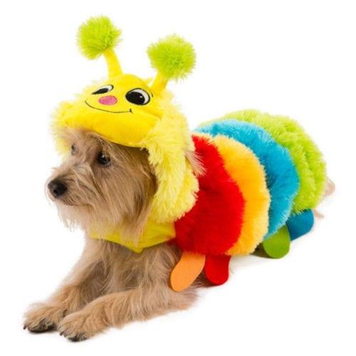 Big Dog Caterpillar Dog Costume