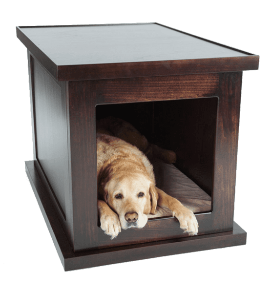 meet the zen dog crate a new solution for canine anxiety With smart dog kennel