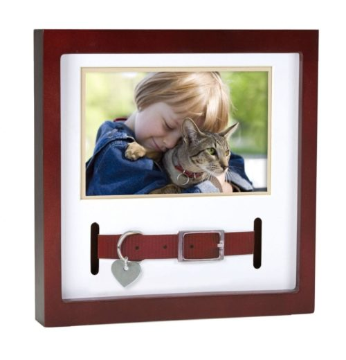 Dog Collar Frame