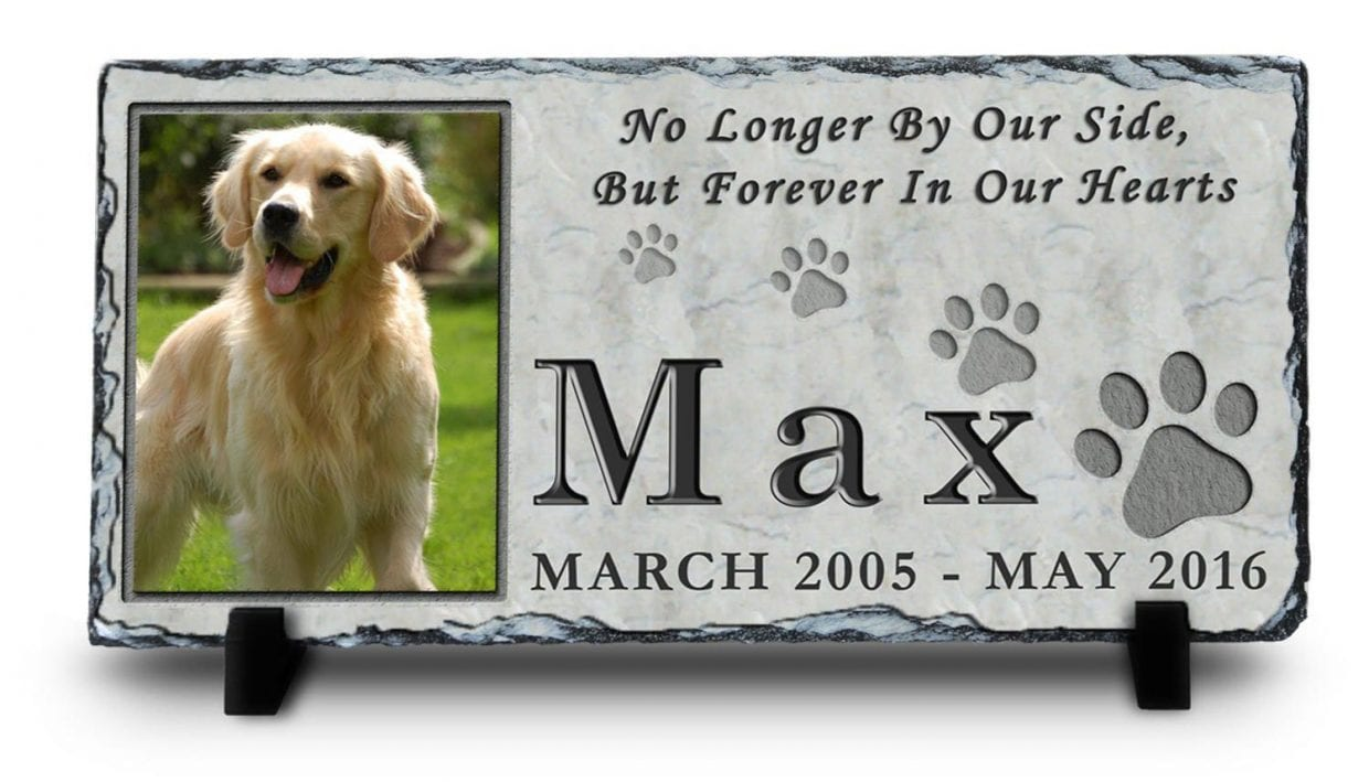 Memorializing Your Senior Dog - How to Keep the Memory Alive