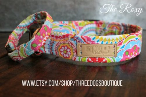 Colorful Dog Collar