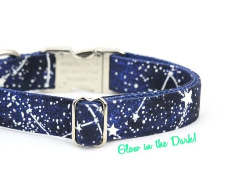 Glow in the Dark Star Collar