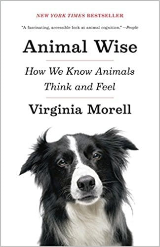 Animal Wise: How We Know Animals Think and Feel 1st Edition, Kindle Edition by Virginia Morell