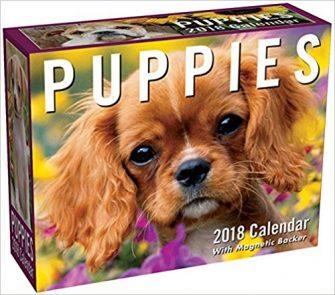 Mini 2018 Dog Calendar