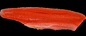 mercury in salmon
