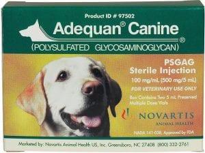 The Best Arthritis Medication for Dogs