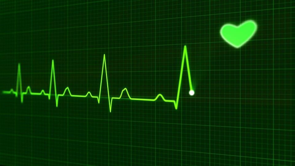 Canine Syncope, Seizure, Heart Attack and Stroke