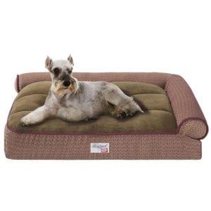 Innerspring Dog Bed