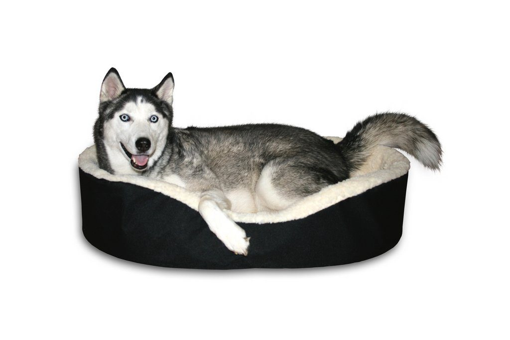 The Lounger Dog Bed