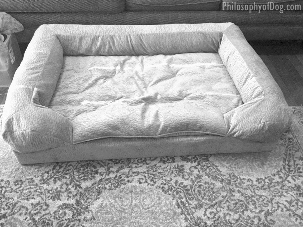 Forgiveness Bed For Dogs
