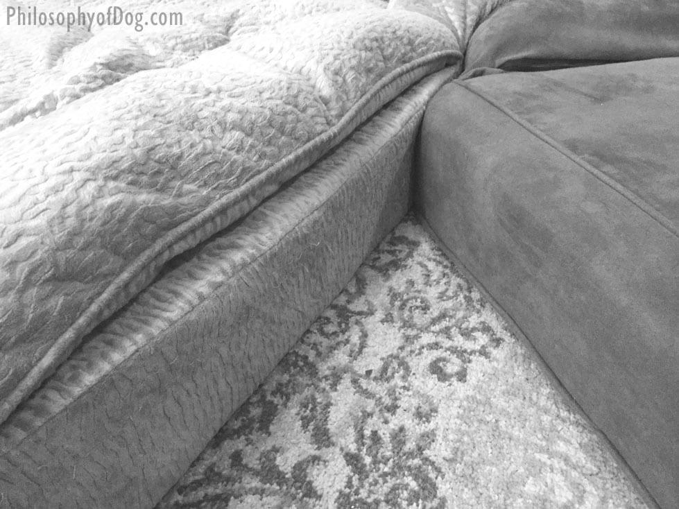 Snoozer Dog Beds